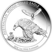 Australia 100 Dollars Wedge-tailed Eagle 2018 P Proof AUSTRALIAN WEDGE-TAILED EAGLE 2018 1 OZ 9995 PLATINUM coin reverse