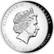 Australia 2 Dollars Tiger & Dragon 2018 Proof ELIZABETH II AUSTRALIA 2 OZ 9999 AG 2018 2 DOLLARS IRB coin obverse