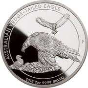 Australia 2 Dollars Wedge-tailed Eagle 2018 P Proof AUSTRALIAN WEDGE-TAILED EAGLE 2018 2 OZ 9999 SILVER coin reverse