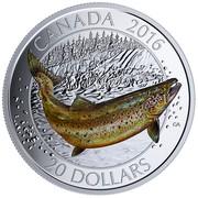 Canada 20 Dollars Atlantic Salmon 2016 Proof CANADA 2016 20 DOLLARS coin reverse