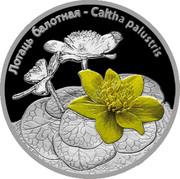 Belarus 20 Roubles Caltha Palustris Flower 2014 Proof ЛОТАЦЬ БАЛОТНАЯ CALTHA PALUSTRIS coin reverse