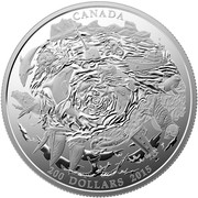 Canada 200 Dollars Coastal Waters of Canada 2015 Matte Proof KM# 1878 CANADA 200 DOLLARS 2015 coin reverse