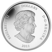 Canada 250 Dollars Maple Leaf Forever 2011 Proof KM# 1160 ELIZABETH II 250 DOLLARS D∙G∙REGINA 2011 SB coin obverse