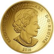 Canada 2500 Dollars In the Eyes of the Spirit Bear 2016 Proof ELIZABETH II 2500 DOLLARS D∙G∙REGINA 2016 coin obverse