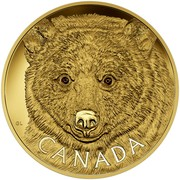 Canada 2500 Dollars In the Eyes of the Spirit Bear 2016 Proof GL CANADA coin reverse