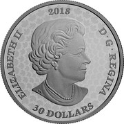 Canada 30 Dollars Enchanted Garden Gates 2018 Proof ELIZABETH II 2018 D • G • REGINA 30 DOLLARS SB coin obverse