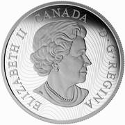 Canada 30 Dollars Fast and Furry 2015 Proof ELIZABETH II CANADA D ∙ G ∙ REGINA SB coin obverse