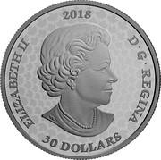 Canada 30 Dollars Royal Canadian Mint Gates 2018 Proof ELIZABETH II 2018 D • G • REGINA 30 DOLLARS SB coin obverse