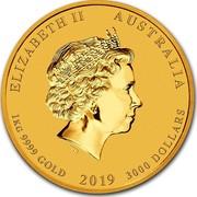 Australia 3000 Dollars Year of the Pig 2019 ELIZABETH II AUSTRALIA 1 KG 9999 GOLD 2019 3000 DOLLARS IRB coin obverse
