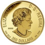 Canada 350 Dollars The Bold Black Bear 2016 Proof ELIZABETH II CANADA D· G· REGINA 99999 FINE GOLD 350 DOLLARS OR PUR coin obverse