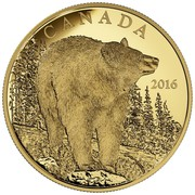 Canada 350 Dollars The Bold Black Bear 2016 Proof CANADA 2016 coin reverse