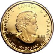 Canada 350 Dollars Yukon Fireweed 2004 Proof ELIZABETH IICANADAD G REGINA 2004 .99999 FINE GOLD 350 DOLLARS OR PUR coin obverse