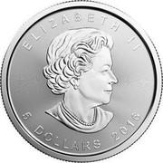 Canada 5 Dollars Polar Bear Cub 2016 ELIZABETH II 5 DOLLARS 2016 SB coin obverse