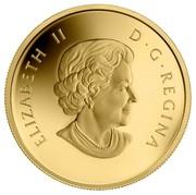 Canada 5 Dollars The Polar Bear 2013 Proof KM# 1401 ELIZABETH II D∙G∙REGINA coin obverse