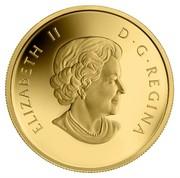Canada 5 Dollars The Wolf 2013 Proof KM# 1454 ELIZABETH II D∙G∙REGINA coin obverse