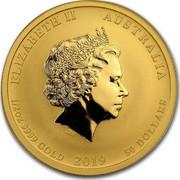 Australia 50 Dollars Year of the Pig 2019 ELIZABETH II AUSTRALIA 1/2 OZ 9999 GOLD 2019 50 DOLLARS IRB coin obverse