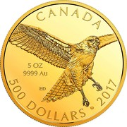 Canada 500 Dollars Red-Tailed Hawk 2017 Proof CANADA 5 OZ 9999 AU ED 500 DOLLARS • 2017 coin reverse