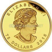 Canada 75 Dollars The Trophy: FIFA Women's World Cup 2015 Proof ELIZABETH II 75 DOLLARS 2015 coin obverse