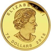 Canada 75 Dollars FIFA Women's World Cup Canada 2015 Proof ELIZABETH II 75 DOLLARS 2015 coin obverse