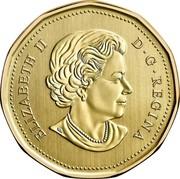 Canada Dollar Burrowing Owl 2018 Specimen ELIZABETH II D • G • REGINA SB coin obverse