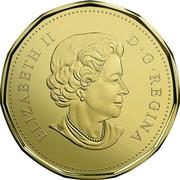 Canada Dollar Holiday 2017 ELIZABETH II D • G • REGINA SB coin obverse