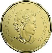 Canada Dollar Snow Goose 2017 ELIZABETH II D • G • REGINA SB coin obverse