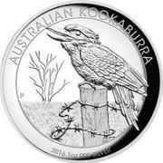 Australia 1 Dollar (Kookaburra) AUSTRALIAN KOOKABURRA P NM coin reverse
