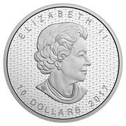 Canada 10 Dollars Iconic Maple Leaf 2017 Matte Proof ELIZABETH II 10 DOLLARS 2017 coin obverse