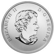 Canada 25 Cents FIFA World Cup 2014 Specimen KM# 1632 ELIZABETH II D∙G∙REGINA coin obverse
