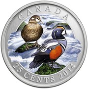 Canada 25 Cents Harlequin Duck 2014 Specimen KM# A1630 CANADA TT 25 CENTS 2014 coin reverse
