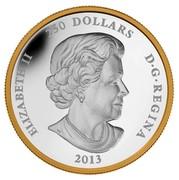 Canada 250 Dollars Maple Leaf Forever 2013 Proof KM# 1438 ELIZABETH II 250 DOLLARS D∙G∙REGINA 2013 coin obverse