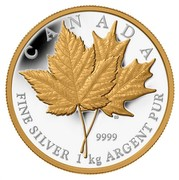Canada 250 Dollars Maple Leaf Forever 2013 Proof KM# 1438 CANADA 9999 ED FINE SILVER 1 KG ARGENT PUR coin reverse