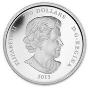 Canada 250 Dollars Year of the Snake 2013 Proof KM# 1366 ELIZABETH II 250 DOLLARS D∙G∙REGINA 2013 SS coin obverse