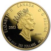 Canada 350 Dollars Ontario White Trillium 2003 Proof KM# 504 ELIZABETH II CANADA D· G· REGINA 2003 .99999 FINE GOLD 350 DOLLARS OR PUR coin obverse
