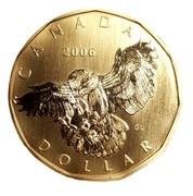 Canada Dollar Snowy owl 2006 Proof, Specimen KM# 582 CANADA 2006 GL DOLLAR coin reverse