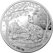 Australia One Dollar (Australian Kangaroo. Seasons Change) ONE DOLLAR 1 OZ .999 AG coin reverse