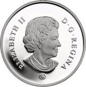 Canada 25 Cents Montreal Canadians 2007 Maple leaf Prooflike KM# 723 ELIZABETH II D G REGINA coin obverse