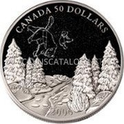 Canada 50 Dollars Summer Constellation 2006 Proof KM# 674 CANADA 50 DOLLARS 2006 coin reverse