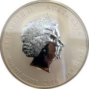 Australia 10 Dollars Year of the Monkey Coloured 2016 ELIZABETH II AUSTRALIA 10 OZ 999 SILVER 2016 10 DOLLARS IRB coin obverse