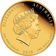 Australia 100 Dollars Year of the Dog. High Relief 2018 P Proof ELIZABETH II AUSTRALIA 1OZ 9999 GOLD 2018 100 DOLLARS coin obverse