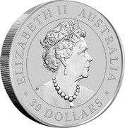 Australia 30 Dollars Koala 2019 P Proof ELIZABETH II AUSTRALIA 30 DOLLARS coin obverse