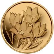 Canada 350 Dollars Prairie Crocus 2010 Proof KM# 1019 CG coin reverse