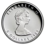 Canada 5 Dollars Elizabeth II 2nd Portrait 1989 Proof KM# 164 ELIZABETH II 5 DOLLARS 1989 coin obverse