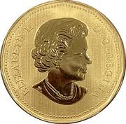 Canada Dollar Pileated Woodpecker 2019 Specimen ELIZABETH II D ∙ G ∙ REGINA coin obverse