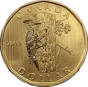 Canada Dollar Pileated Woodpecker 2019 Specimen CANADA 2019 JCD DOLLAR coin reverse