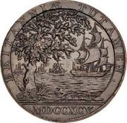 UK Halfpenny Warwickshire - Birmingham-Clarke's 1795  BRITANNIÆ TUTAMEN MDCCXCV coin reverse