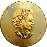 Canada 2,500 Dollars 40th Anniversary of the GML 2019 ELIZABETH II 2500 DOLLARS 2019 coin obverse