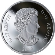 Canada 20 Dollars Mystical Snow Day 2019 ELIZABETH II D • G • REGINA 2019 coin obverse