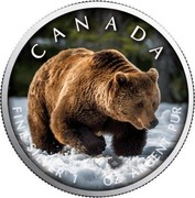 Canada 5 Dollars Grizzly Bear (Colored) 2019 CANADA FINE SILVER 1 OZ ARGENT PUR coin reverse