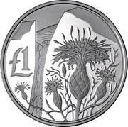 Cyprus Pound Centaurea Akamantis 2006 Proof KM# 77a £1 coin reverse